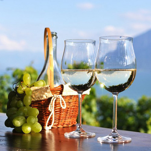 Wine and food tours